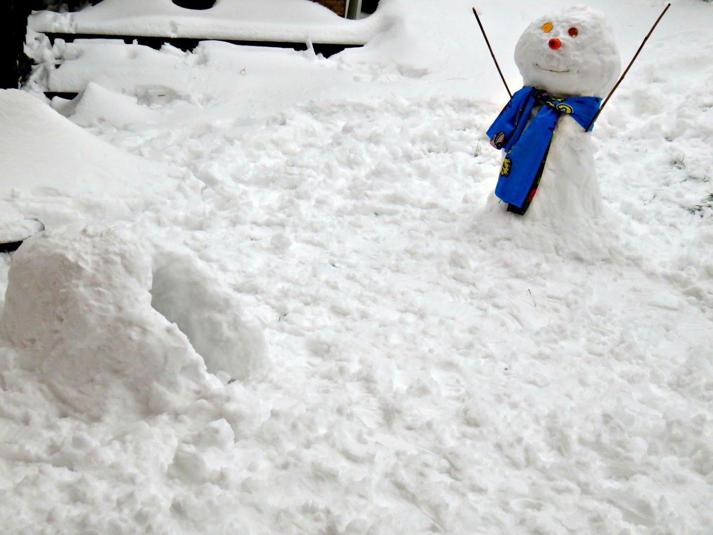 igloo and snowman
