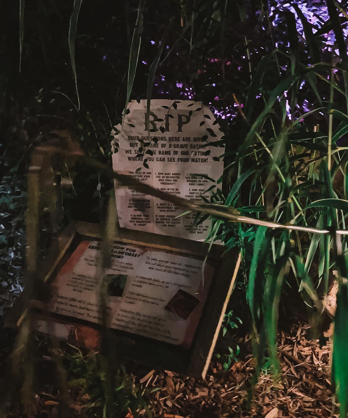 Colchester Zoo Trail of Terror
