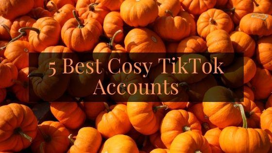 5 Best Cosy TikTok Accounts to Follow